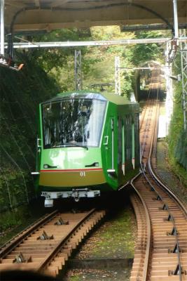 DSC00001 (11).jpg